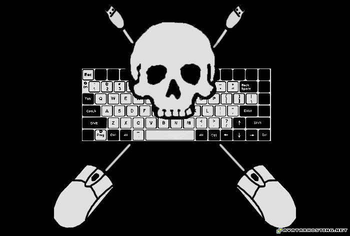 pirate Internet_Pirate_Flag_by_Joshernaut
